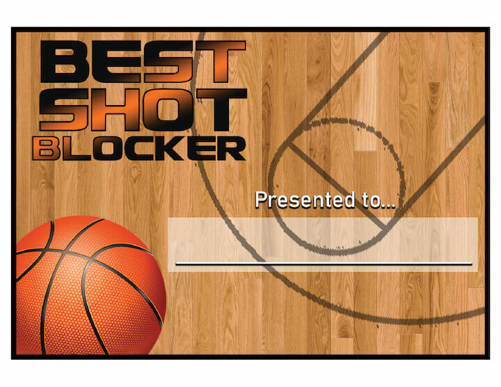 Best Shot Blocker